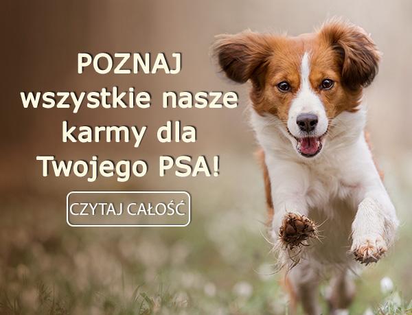 Poznaj wszystkie nasze karmy dla Twojego psa