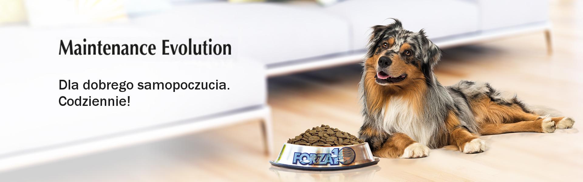 Karmy Forza10 Maintenance Eolution dla dobrego samopoczucia codziennie
