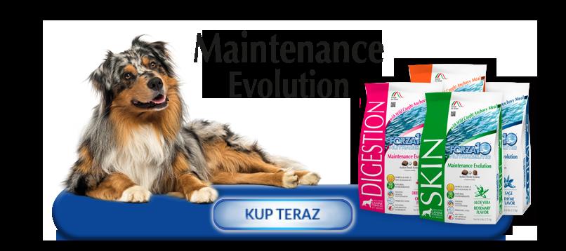 Kup teraz produkty z linii Forza10 Maintenance Evolution Line dla psów