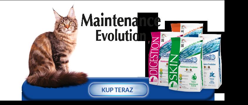 Kup teraz produkty z linii Forza10 Maintenance Evolution Line dla kotów