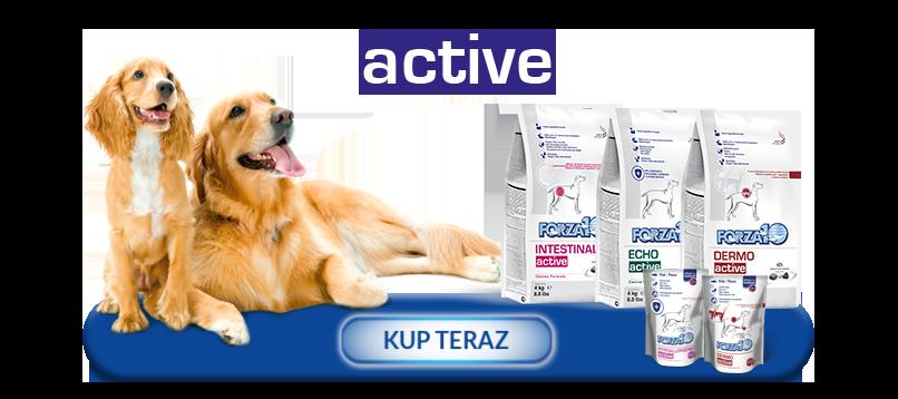 Kup teraz produkty z linii Forza10 Active Line dla psów
